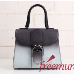 DELVAUX 톰페트 MINI brillant